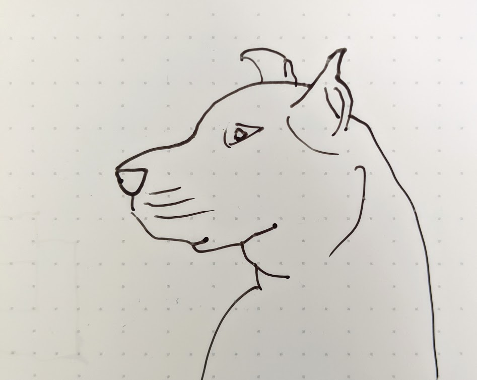 Quick sketch of a dog.